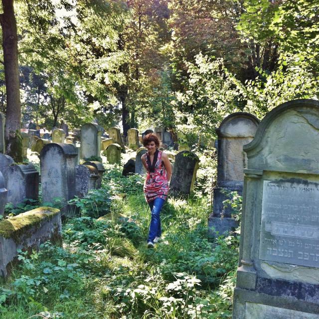 """""""Tarnów Jewish Cemetery"""" stock image"""