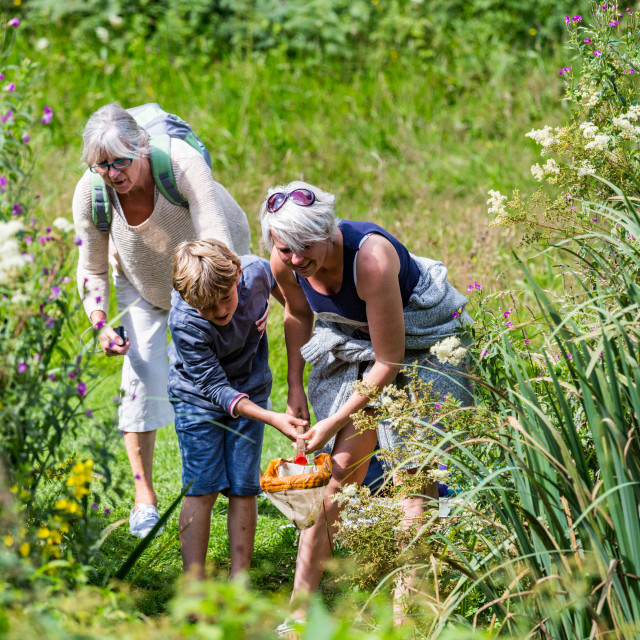 """Family fun at Colby Woodland Gardens, Pembrokeshire, Wales"" stock image"