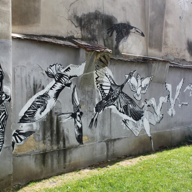 """Tarnów, Poland Street Art"" stock image"