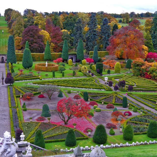 """Castle Drummond Gardens"" stock image"