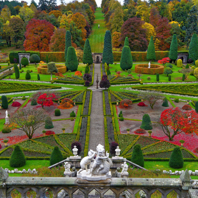 """Castle Drummond Gardens"" stock image"