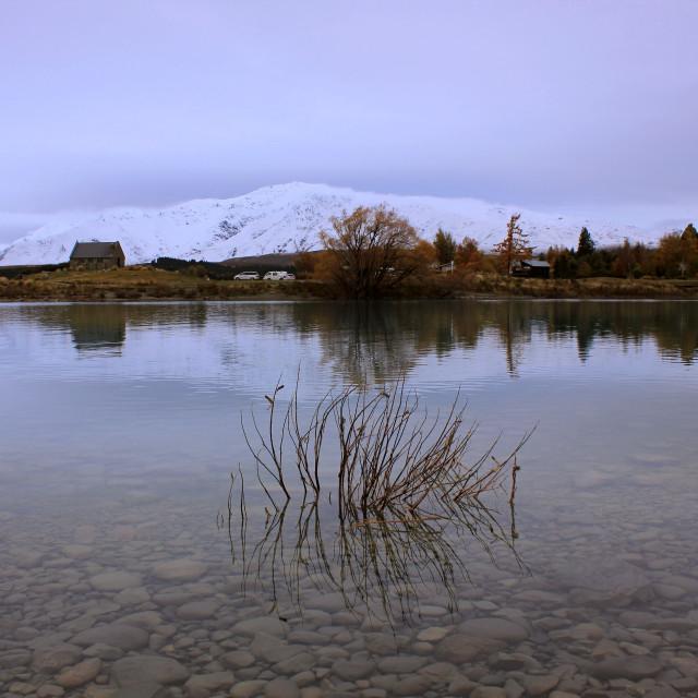 """""""Lake Tekapo, New Zealand"""" stock image"""