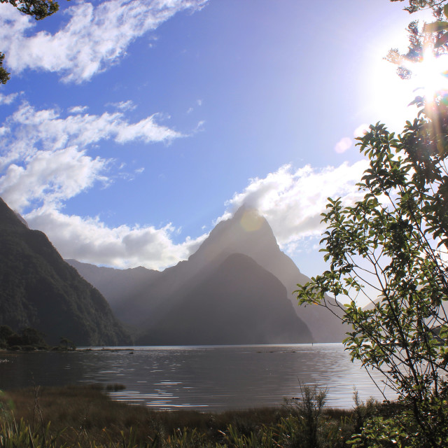 """""""Milford Sound Scenery"""" stock image"""