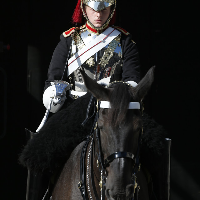"""Household Cavalry Guardsman"" stock image"