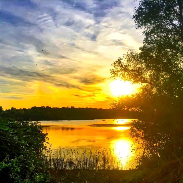 """Evening at Hosehill Lake, Berkshire"" stock image"