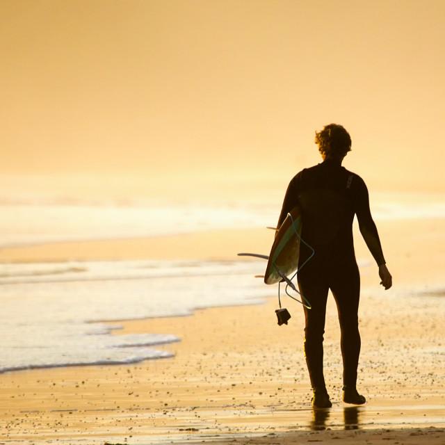 """Sunset Surfer."" stock image"