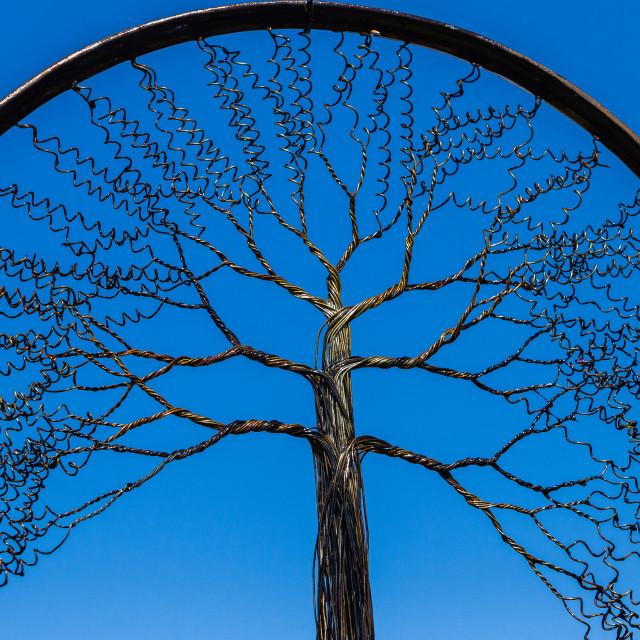 """Wire Tree Branches Rim"" stock image"