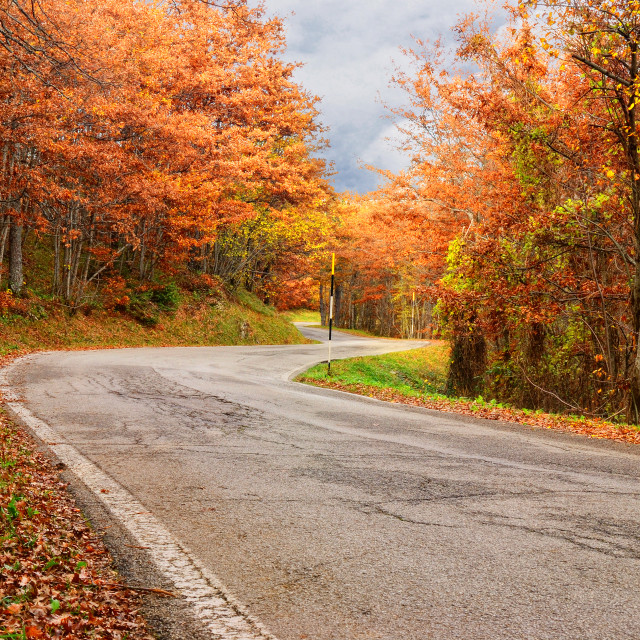 """mountain road"" stock image"