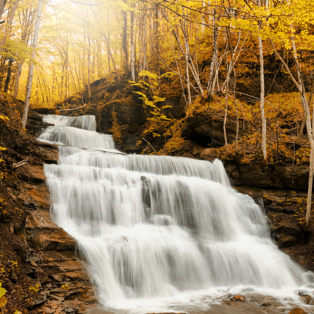 """waterfall in the wood"" stock image"