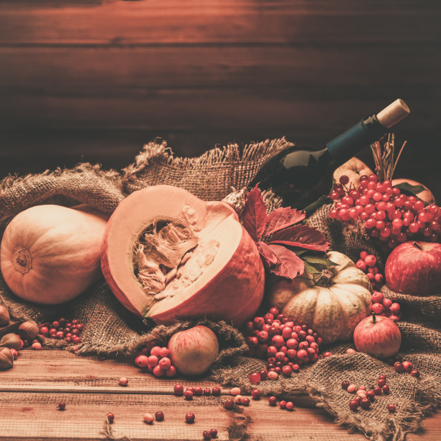 """Thanksgiving day autumnal still life with bottle of wine"" stock image"