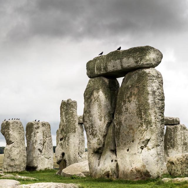 """""""Stonehenge, Salisbury, UK"""" stock image"""