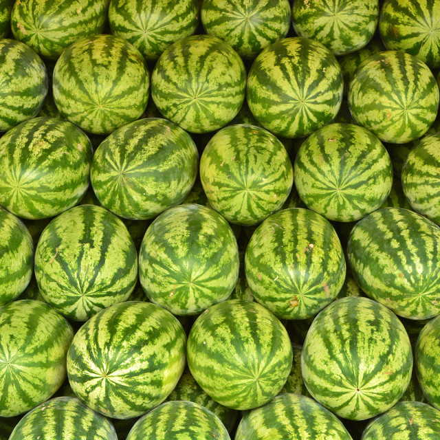 """Waltermelons Galore"" stock image"