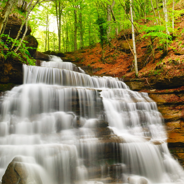 """waterfall in the park"" stock image"