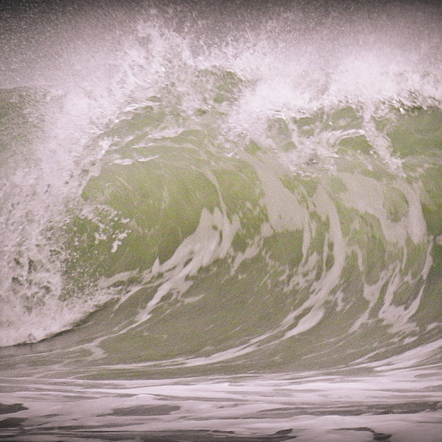 """""""Anatomy of a wave"""" stock image"""