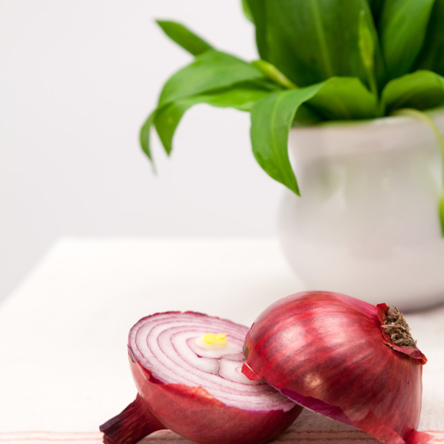 """Still life composition with bear's garlic (Allium Ursinum) and onion"" stock image"