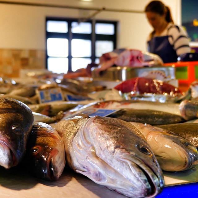 """Aljezur Fish Market"" stock image"