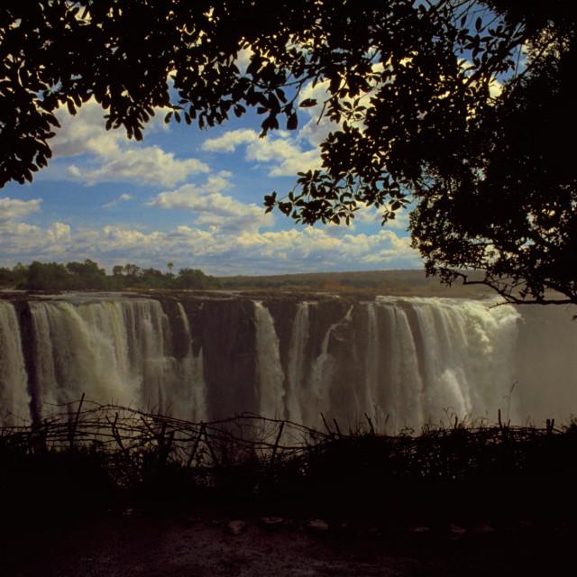 """Victoria Falls"" stock image"