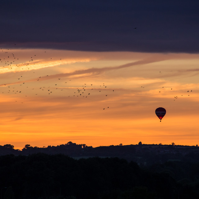 """A Hot Air Balloon in Sunset with Flock of Birds"" stock image"