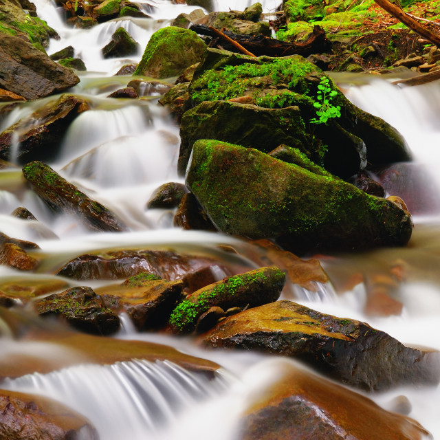 """water create cascades running on the stones"" stock image"