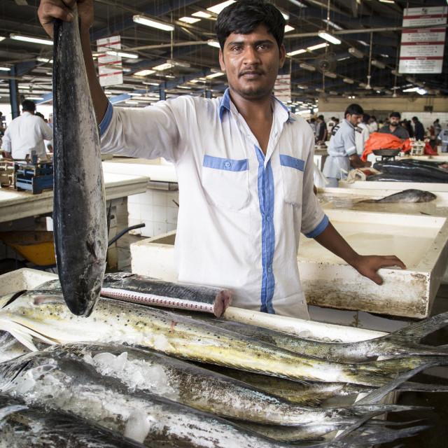 """""""Dubai's fish market"""" stock image"""
