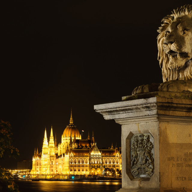 """View of Hungarian parliament at night"" stock image"
