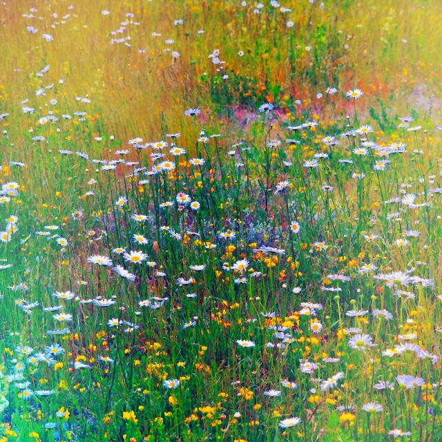 """Monet Summer"" stock image"