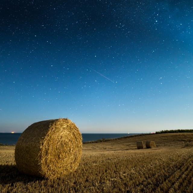 """Perseid Meteor in Moonlight"" stock image"