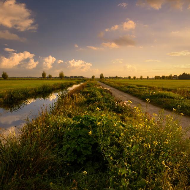 """Sunrise over the Boterhuispolder, Leiderdorp, The Netherlands"" stock image"