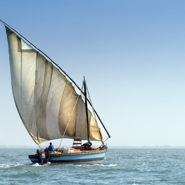 """Dhow sailing"" stock image"