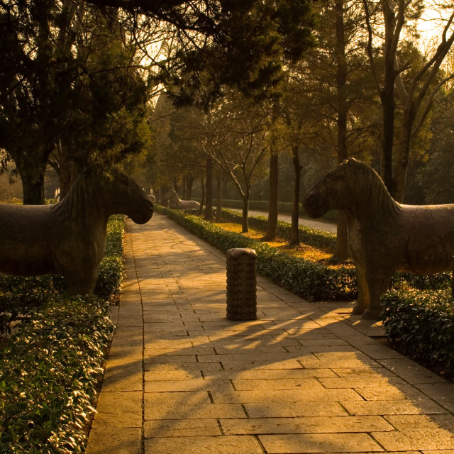 """Horses on The Sacred Way"" stock image"