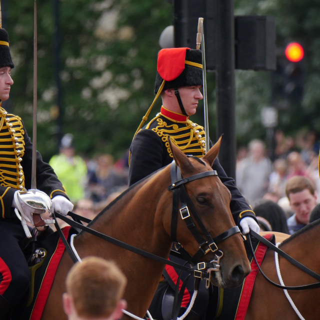 """""""Changing the guard"""" stock image"""