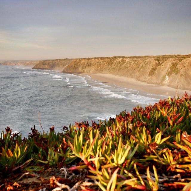 """Western Algarve coast"" stock image"