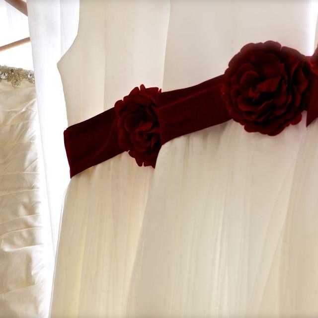 """Wedding dress and bridesmaid dress, hanging"" stock image"