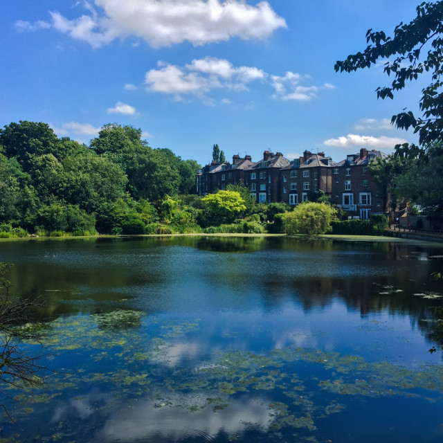 """Summer Day, Hampstead Heath"" stock image"
