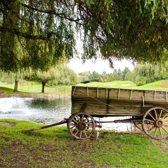 """old wagon under tree by the pond"" stock image"