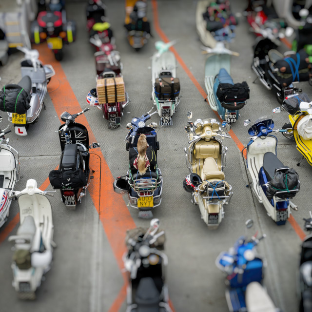 """Scooters Lined up Onboard a Ferry"" stock image"