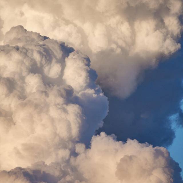 """""""Storm Bringer"""" stock image"""