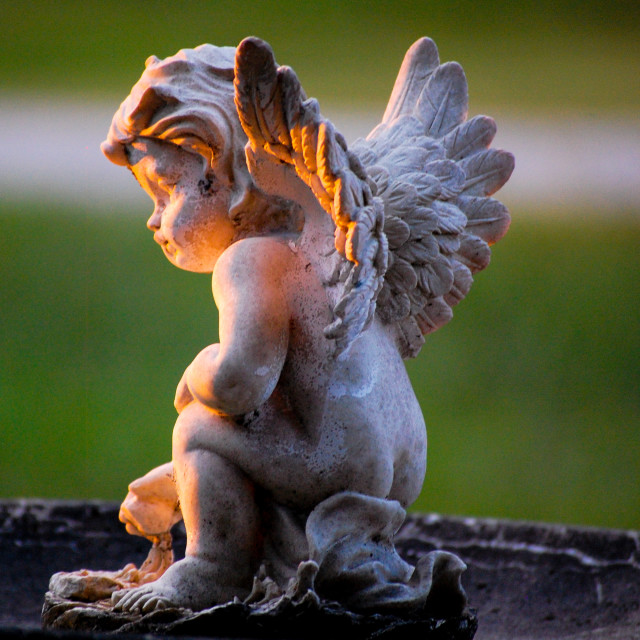 """Sunset Angel"" stock image"