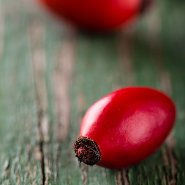 """""""Detail of red hip on green wooden board with worn surface"""" stock image"""