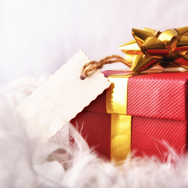 """Red gift box with tag on feathers front wiew"" stock image"