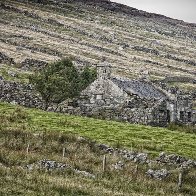 """derelict cottage snowdonia"" stock image"