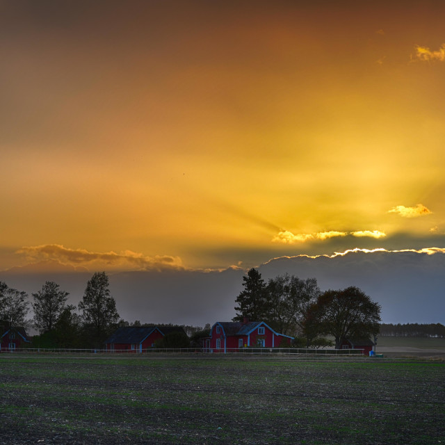 """Sunset in Sweden"" stock image"