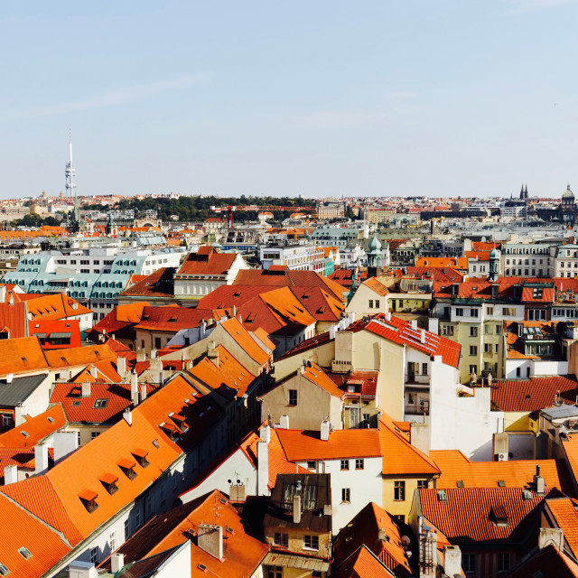 """""""Tiled roofs of Prague"""" stock image"""