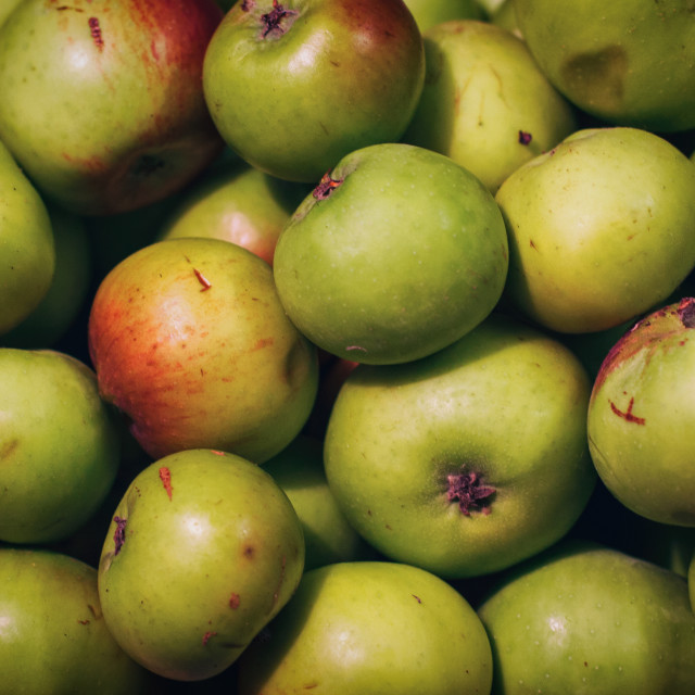 """Apples"" stock image"
