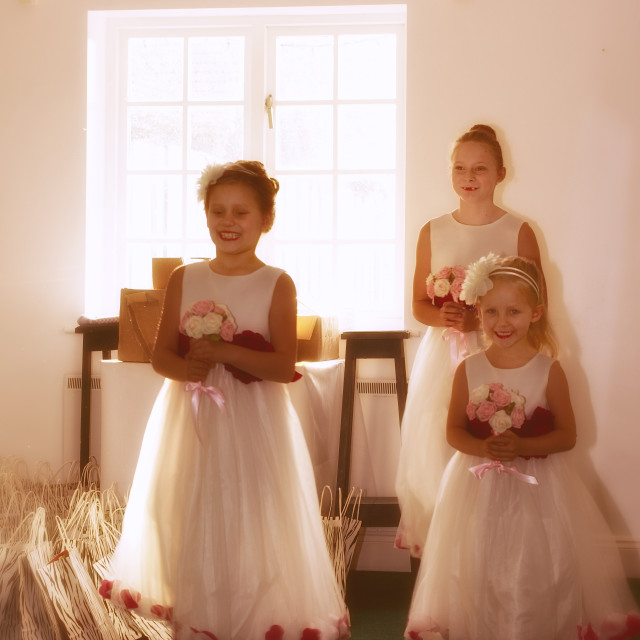 """""""Bridesmaids practice, in window light"""" stock image"""