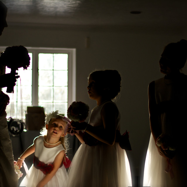 """Bridal pep talk-to young bridesmaids. Half silhouette"" stock image"