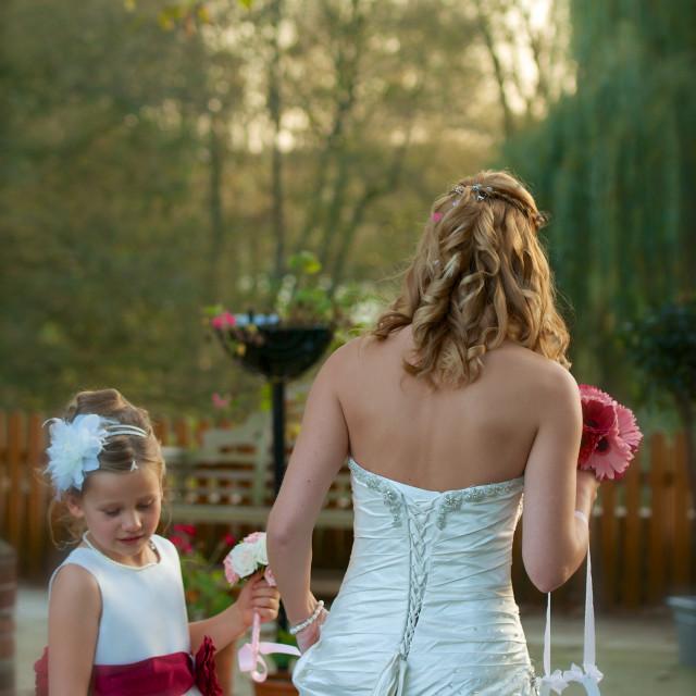 """Bridesmaid and bride"" stock image"