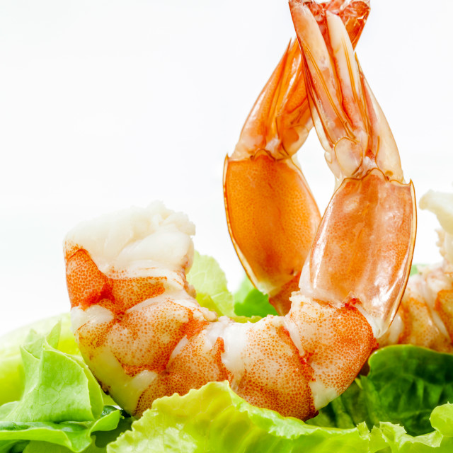 """Fresh steamed prawns with vegetable salad isolate on white background...."" stock image"