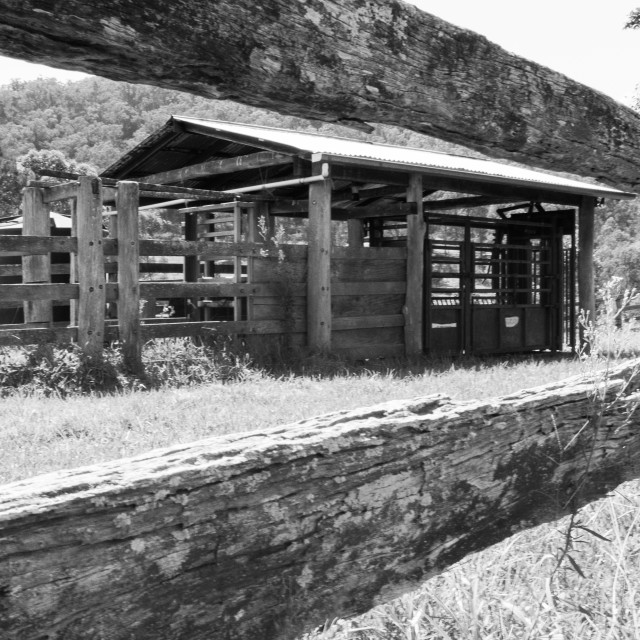 """Old Cow Shed Australia country"" stock image"