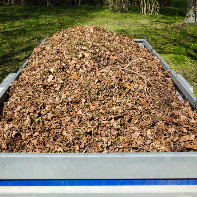 """Dry leaves loaded in a small trailer"" stock image"